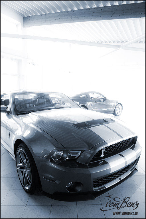 Ford_Mustang_Meyer06