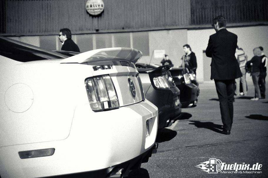 Shelby_GT500_Treffen_01