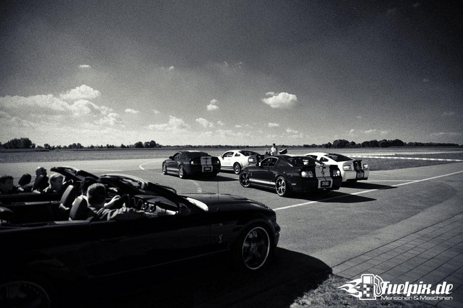 Shelby_GT500_Treffen_05