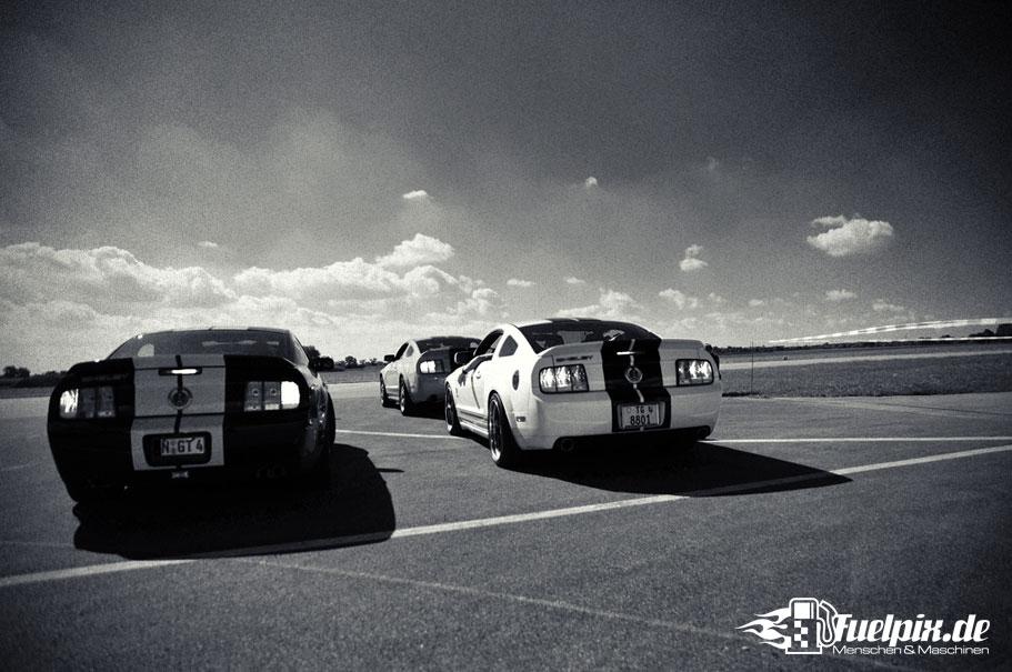 Shelby_GT500_Treffen_06