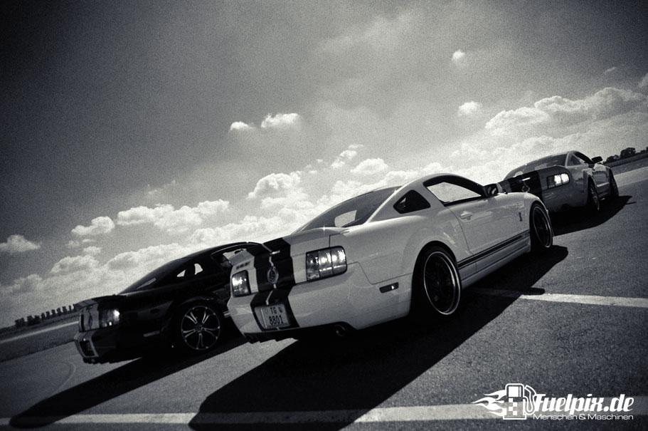 Shelby_GT500_Treffen_07