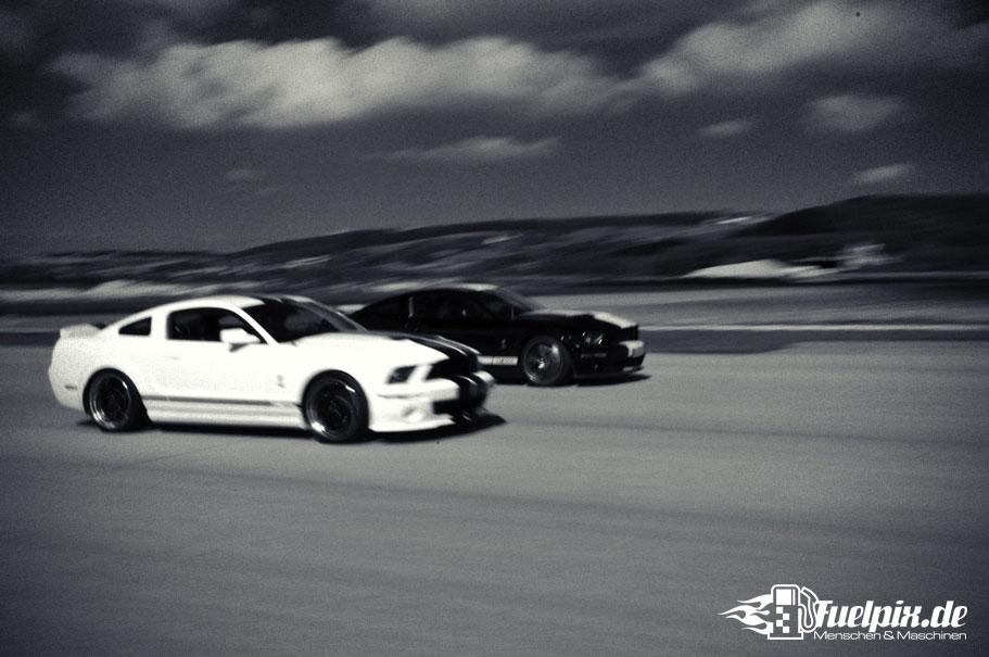 Shelby_GT500_Treffen_08
