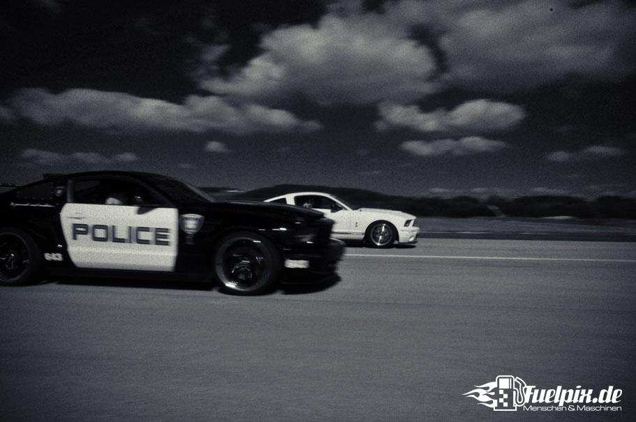Shelby_GT500_Treffen_12