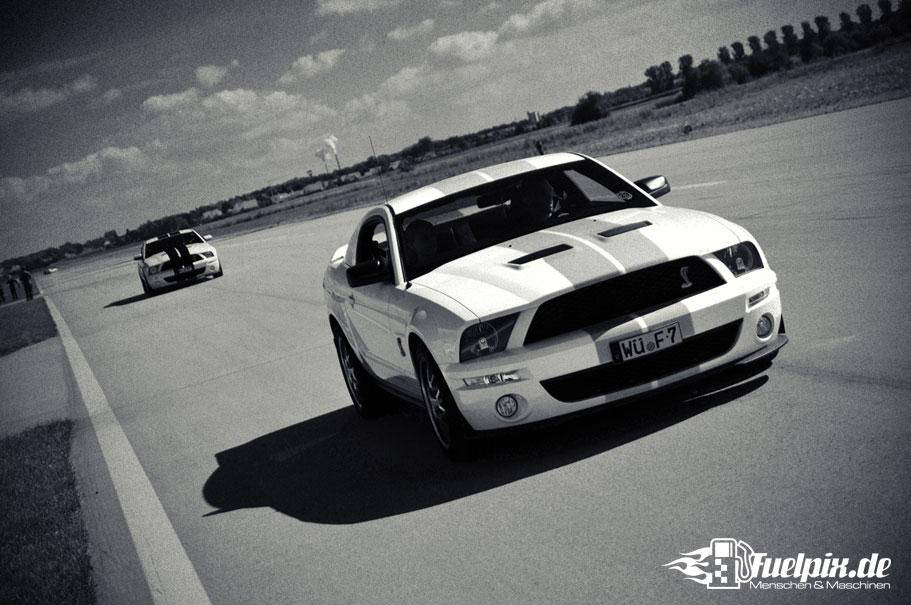 Shelby_GT500_Treffen_17
