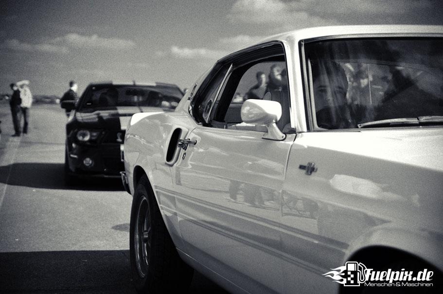 Shelby_GT500_Treffen_24