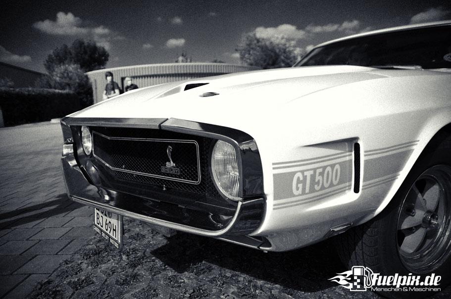 Shelby_GT500_Treffen_26